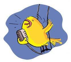 Τραγούδια για μωρά - Ο Σοφοκλής το καναρίνι