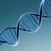 DNA Τεστ Όλη η Αλήθεια