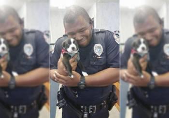 Ένα κουτάβι μέλος του αστυνομικού σώματος