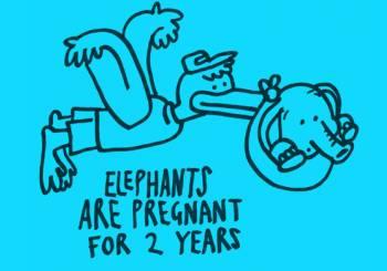 Εγκυμοσύνη και παράξενα επιστημονικά γεγονότα