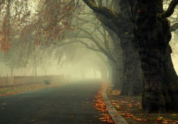 Φθινοπωρινός ο καιρός - Έρχονται βροχές και καταιγίδες