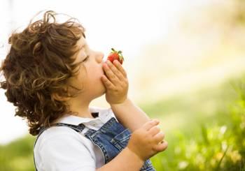 Παιχνίδια που διδάσκουν στα παιδιά τα οφέλη των φρούτων και λαχανικών