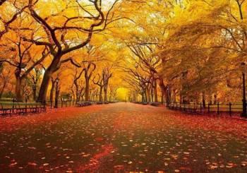 Φθινοπωρινή ισημερία: Η πρώτη ημέρα του Φθινοπώρου